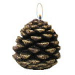 candle-pine-cone-small.jpg